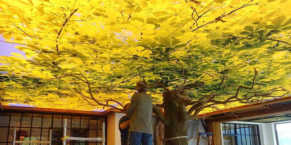 Atmosphärische Blätterkrone entsteht aus Großformatdruck von Erler+Pless Hamburg