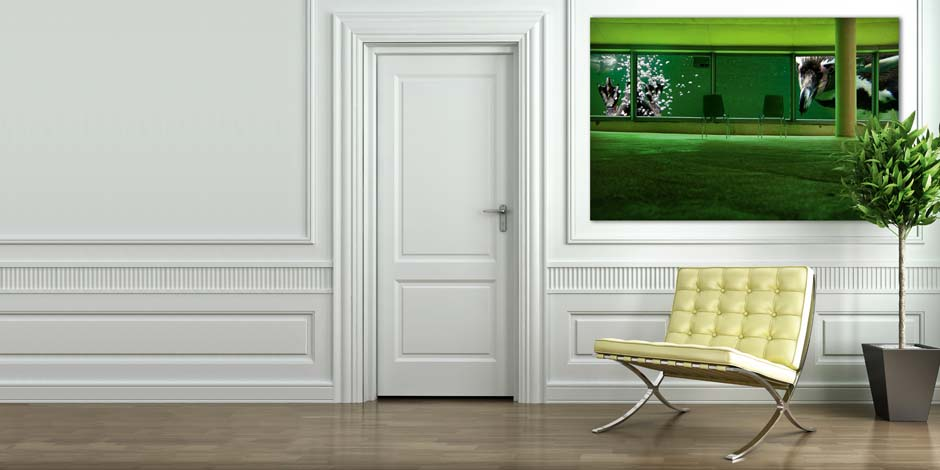wand erler pless hamburg. Black Bedroom Furniture Sets. Home Design Ideas